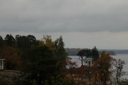 Geese of passage, Monrepos Park, Vyborg