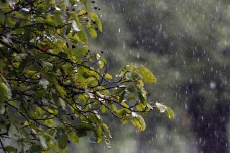 Power cuts off as rain gets heavy