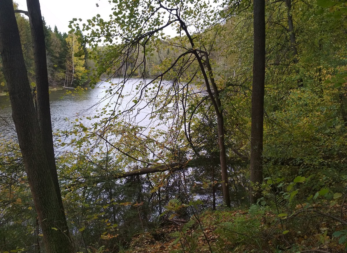 Lesnoye Lake